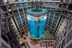 The AquaDom in Berlin, Germany at the Radisson Blu Hotel is an elevator that travels through an aquarium. The aquarium is the largest of its kind in the world. Oh The Places You'll Go, Places To Travel, Places To Visit, Berlin Travel, Hotel Lobby, Best Hotels, Amazing Hotels, Unusual Hotels, Amazing Destinations
