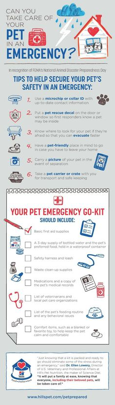 """Infographic """"Can You Take Care of Your Pet in an Emergency"""" which includes a checklist of what to include in your Pet Emergency Go-Kit."""