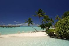 This would be my ultimate dream vacation to Bora Bora!