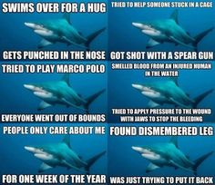 misunderstood sharks!