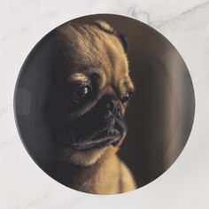 Adorable purebred pug trinket trays - dog puppy dogs doggy pup hound love pet best friend