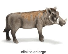 Schleich - Warthog Boar - Retired - click to enlarge