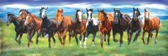 """Shop American Expedition Jigsaw Puzzles - """"Running Wild"""" 550 Piece Horse Puzzle - Gather the family for a new wildlife puzzle Winter Horse, Horse Fencing, Ducks Unlimited, Wild Mustangs, Wild Ones, Fresh Water, Jigsaw Puzzles, Freedom, Wildlife"""
