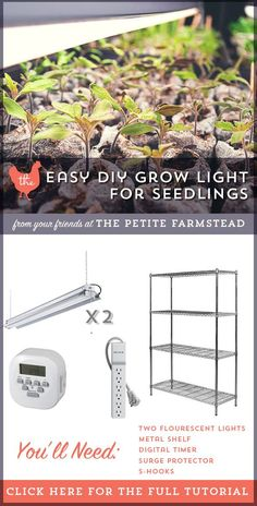 How to Build an Easy DIY Grow Light for Seedlings