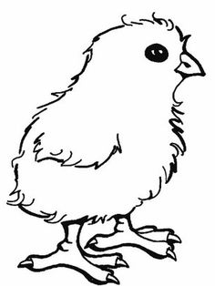 Little Baby Chick Coloring Page Free printable Easter and Babies