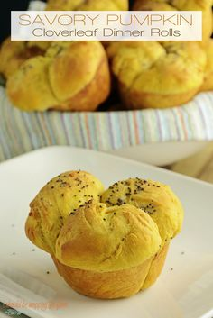 Savory Pumpkin Cloverleaf Dinner Rolls   Perfectly pumpkin and yeasty delicious rolls for your holiday table.