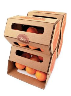 Sanose Clementines Package Design by Rachel Spoon