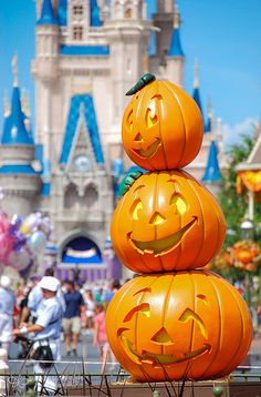 It's Autumn on Main St.  WDW
