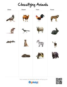 Teaching with help of the interactive whiteboard in a simple and effective way Classifying Animals, Interactive Whiteboard, Keys, Deserts, Pdf, Urban, Activities, Desserts, Animal Classification