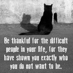 Be thankful for the difficult people in your life, for the have shown you exactly who you do not want to be. thedailyquotes.com
