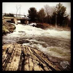 Bala Falls   https://www.facebook.com/photo.php?fbid=10151342183423639=a.10151342183318639.1073741830.83689543638=1