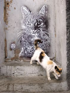 C215 - Casablanca | Flickr - Photo Sharing!