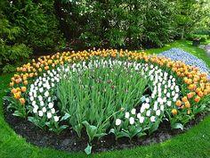 Potager Garden, Garden Paths, Garden Art, Landscaping Tips, Garden Landscaping, Gardening For Beginners, Gardening Tips, Plant Design, Garden Design
