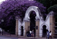 Portões do Passeio Público - elementos da Art Nouveau em Curitiba