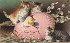 Kittens and chick vintage Easter postcard