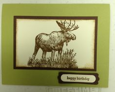 Stampin' Up! - Walk in the Wild