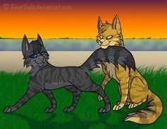Favorite Warrior Couple of the Day ~ Lionblaze X Cinderheart