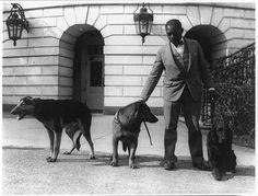 Gotta Love A German Shepherd ~ Robert R. Robinson, kennel master at the White House for Herbert Hoover's dogs, Buckeye, a German police dog; King Tut, a Belgian police dog; and Englehurst Gillette, a Gordon setter.