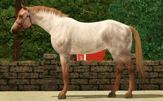 Sims 3 Horses for Sale | Re: [DL 04/19] WR's All-breed Halter Show