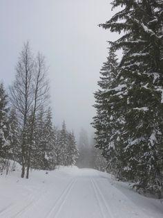 Ach, so schön, der Schnee ist da! Hoffentlich gibt es auch weiße Weihnachten... <3