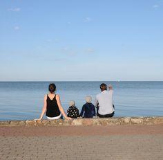 Spotting seagulls - Sitting on the banks Lagoon in Nida, Lithuania