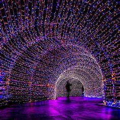 tunnel of love, osaka castle, japan