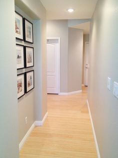 Light oak flooring design ideas pictures remodel and for Dunn edwards interior paint