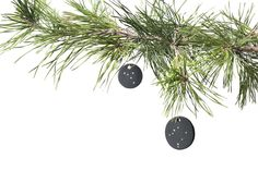Zodiac Rhinestone Ornaments