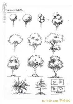 Architectural sketches 786933734875430480 - Ideas Drawing Architecture Sketches Trees Source by Architecture Concept Drawings, Landscape Architecture Drawing, Landscape Sketch, Landscape Drawings, Landscape Design, Plant Sketches, Tree Sketches, Nature Drawing, Plant Drawing