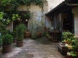 Garden Style: Gardenista