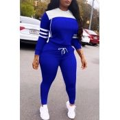 Lovely Casual Hooded Collar Letter Blue Two-piece Pants Set Wholesale Clothing Online Store. We Offer Top Good Quality Cheap Clothes For Women And Men Clothing Wholesaler, # Grey Two Piece, Two Piece Pants Set, Two Piece Outfit, Wholesale T Shirts, Wholesale Clothing, Shoes Wholesale, Cheap Shoes Online, Sport Casual, Cheap Clothes