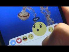 Agora ficou mais legal curtir no Facebook - Zoop Creative Job