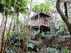 Love tree houses? Climb into these leafy green rentals via Flipkey. #TreeHousing #Wanderlusting #SummerofDoing