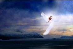 Look out for signs from your angels... feathers, penny's, robins, cloud formations are all signs your angels are near and watching over you.