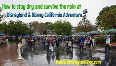 The best ways to stay dry and have fun when it rains at Disneyland and Disney California Adventure. Disneyland Trip, Disneyland Resort, Indoor Attractions, Enjoy Your Vacation, Disney California Adventure, When It Rains, Disney Tips, Rainy Days, Walt Disney World