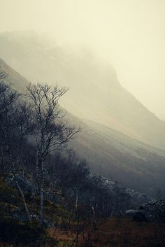 valscrapbook:  silestine: fog II by nikolinelr on Flickr.