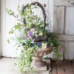 Sign of spring: a birch twig basket, planted with pansies, hellebore, and flowering white cherry branches. Link in profile to see more like this.