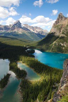 Mary and O'Hara Lakes in Yoho National Park, Canada.