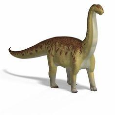 Resultado de imagen para camarasaurus