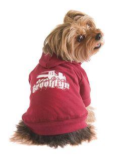 Brooklyn Dog Hoodie by Ruffluv on Gilt Home