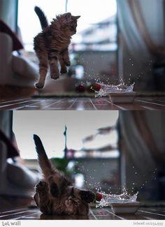 Jumpy...