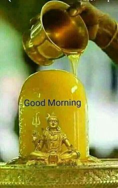 Good Morning Clips, Good Morning Gif Images, Beautiful Morning Pictures, Good Morning Sister, Good Morning Images Download, Good Morning Flowers, Good Morning Coffee, Good Morning Messages, Good Morning Greetings