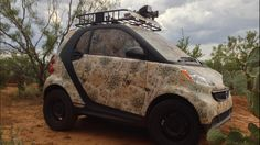 Not a truck, but works on any vehicle, including Smart Cars. Get yours at www.CamoMyRide.com