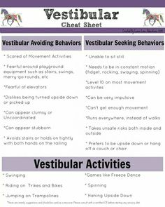 Vestibular Activities cheat sheet