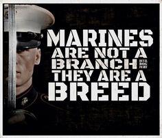 Marines are a breed Marine Corps Quotes, Marine Corps Humor, Usmc Quotes, Military Quotes, Military Mom, Us Marine Corps, Marine Ball, Military Slogans, Marine Corps Tattoos