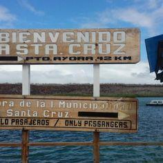 Photos at Santa Cruz, Galapagos - Puerto Ayora, Galápagos