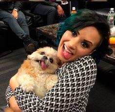 Vários famosos são clicados ao lado da cachorrinha - Demi Lovato brinca ao imitar Marnie