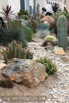 Landscape Design Ideas, Pictures, Remodels and Decor Landscaping ideas, pictures, transformations an Succulent Landscaping, Landscaping With Rocks, Landscaping Plants, Front Yard Landscaping, Succulents Garden, Landscaping Ideas, Mexican Garden, Dry Garden, Xeriscaping