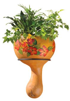 using gourds for planters | Get $20 Off The Box Of Three Craft-Ready Gourd Planters!