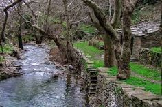 Ikaria, Greece Samos, Mykonos, Beautiful Places, Places To Visit, Ikaria Greece, Nature, Plants, Landscapes, Google Search